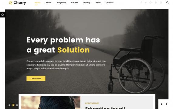 Charry-非营利慈善机构模板