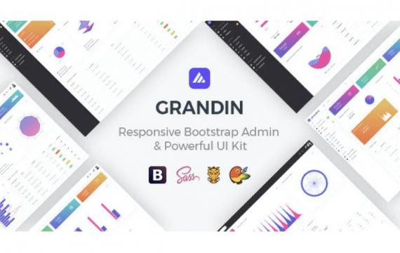 Grandin-响应式引导管理模板