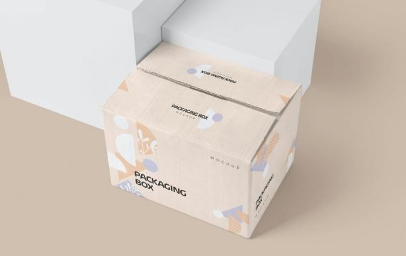 大型矩形纸板包装盒模型纸箱样机