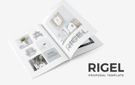 Rigel提案宣传册模板