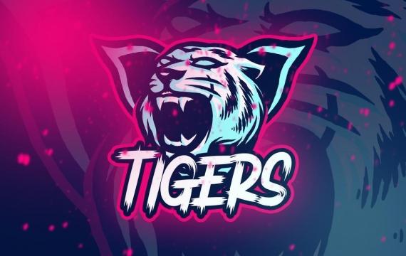老虎电竞徽标卷 3 logo设计