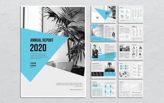 2020公司年度报告小册子