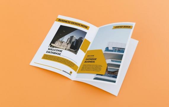 数据库-业务橙色宣传手册12页