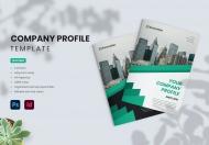 公司简介企业文化宣传画册设计模板