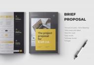 商业计划书手册设计模板